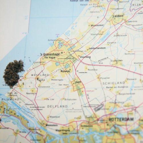 Wat doet de provincie Zuid-Holland eigenlijk?
